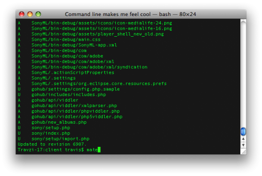 Useful Terminal Commands for work with data